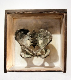 Pelvis, bronze in drawer