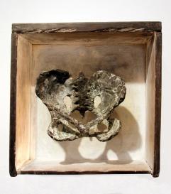 Pelvis, bronze in drawer